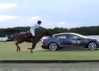 Tesla Model S vs Horse