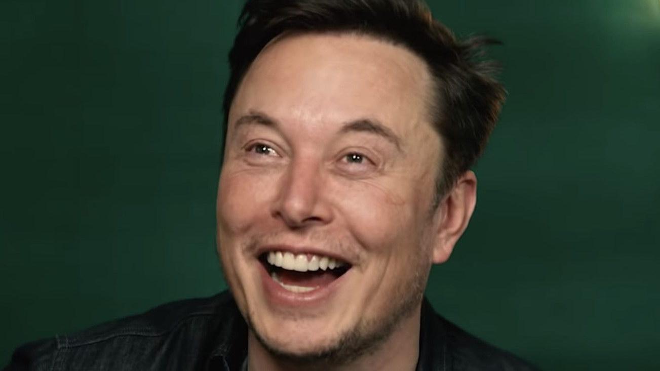 shorts Tesla