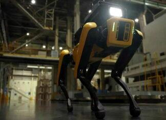 RoboDog Hyundai